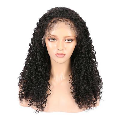 Parksonhair Jerry Curly Human Hair Full Lace Wigs Brazilian  Hair